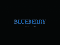DEA - Blueberry 10ml (Borůvka)