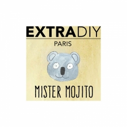 MISTER MOJITO BY EXTRADIY 10ml
